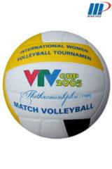 Bóng chuyền VTV Cup