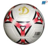 Bóng đá da Nhật 102