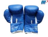 Găng đấm Boxing Everlast L2 xanh, đen
