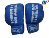 Găng đấm Boxing Everlast L1 xanh, đỏ